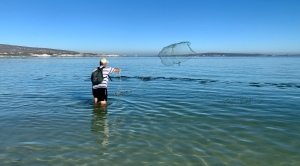 Always Summer B&B Holiday Accommodation Langebaan Lagoon Beach Kite-Surfing
